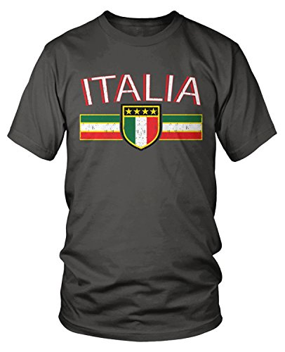 (Amdesco Men's Italia Flag and Shield, Italy Italian Pride T-Shirt, Charcoal Grey Medium)