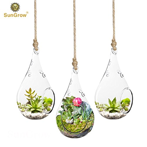Paradise 3 Piece - 3-Piece Teardrop Hanging Terrarium - Mini Hanging Garden - Various Creative DIY Projects - Functional Home Office Décor - Transparent, Heat-Resistant Durable High Boron Silicon Glass