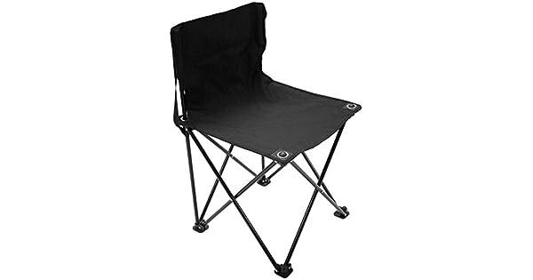 Amazon.com: ProActive Sports Galería silla: Sports & Outdoors