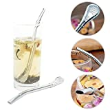 Jeeke Reusable Stainless Steel Metal Drinking Straw Filter Tea Fruit, 2 Pcs Tea Straws (Silver, 6.1inch)