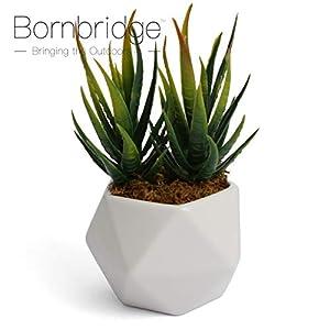Bornbridge Artificial Succulent - Fake Succulent in Planter - Faux Succulent with Ceramic Geometric Planter - Aloe Succulent - Artificial Potted Plant (Single) 3