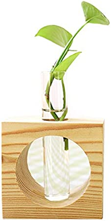Nrpfell 1 Unidades de Madera de Estilo Moderno de Vidrio Planta de Mesa Flor Bonsai Florero Decorativo de Boda Con Bandeja de Madera Accesorios de Decoración Del Hogar