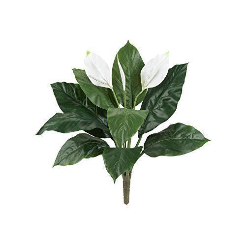 Peace Lilly - Nearly Natural 6030-S3 24
