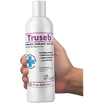 Pet Shampoos : Amazon.com: Pro-Sense Itch Relief Hydrocortisone Shampoo, 8-Ounce - P-82693