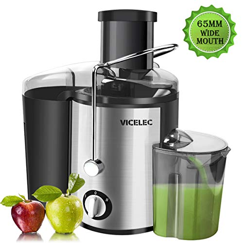 Juicer Extractor – Professional Dual Speed Wide Mouth Fruits and Vegetable Juicer Machines with Juice Jug, 600w Stainless Steel Centrifugal Juicer BPA Free