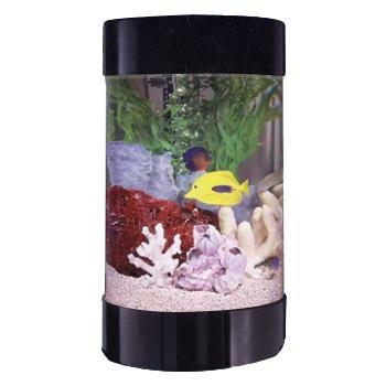 Midwest Tropical AquaRound Aquarium by Midwest Tropical
