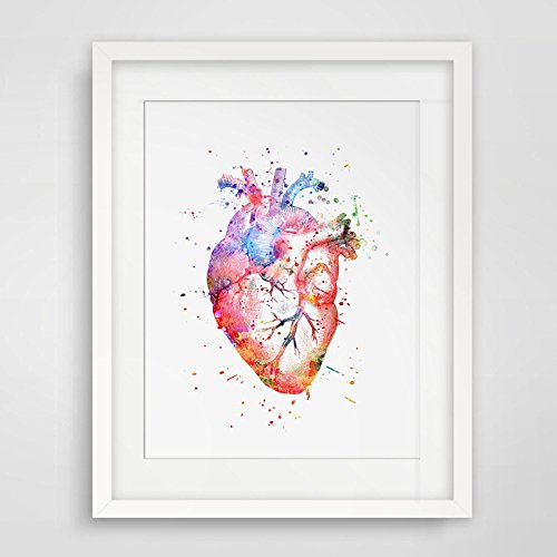 Watercolor Anatomy Heart Images Vintage Graphics Art Print Anatomy Wall Hanging Original Design Printed Artwork 8x10inch No Frame