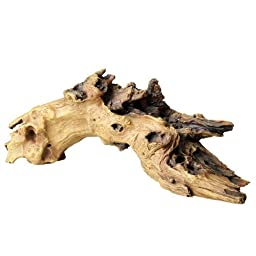 Aqua Della Mopani Wood, 55.4 x 19 x 20.6cm