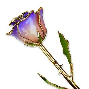 Allmygold Jewelers White & Blue Opal Long Stem Dipped 24K Gold Trim Genuine Rose 19
