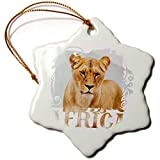 3dRose Andrea Haase Animals Illustration - Lioness And Word Africa Isolated - 3 inch Snowflake Porcelain Ornament (orn_288946_1)
