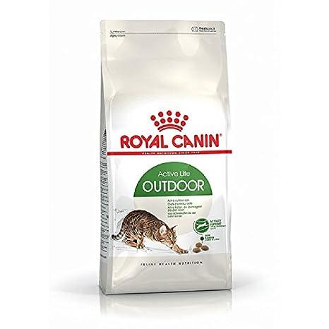 Royal Canin Comida para gatos Outdoor 2 Kg: Amazon.es: Productos ...
