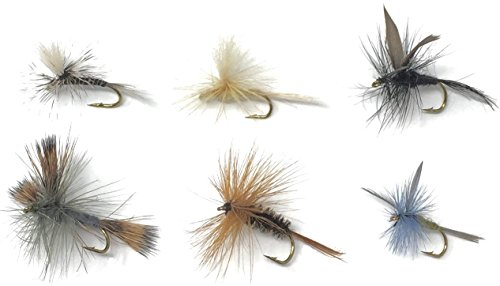 Fly Fishing Flies Assortment - 18 TROUT CRUSHING Dry Mayflies (Black Gnat, Grey Hackle Peacock, Blue Wing Olive, Grey Wulff, Parachute Mosquito, Parachute Light Cahill) - 6 Patterns - Size 14