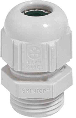 Skintop Pg 29
