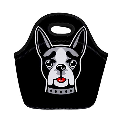 Semtomn Lunch Tote Bag Animal Dog Boston Terrier on White Red and Gray Reusable Neoprene Insulated Thermal Outdoor Picnic Lunchbox for Men Women