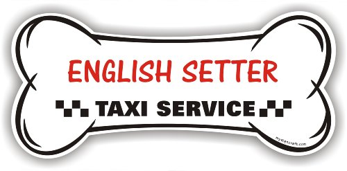 English Setter Taxi Service - magnetic bone sign English Setter Magnet