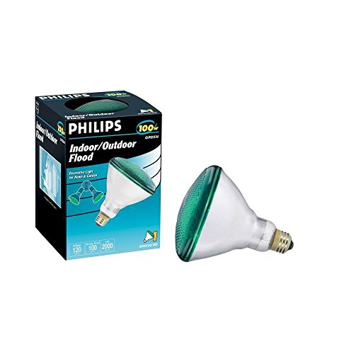 Philips 100W Flood Light in US - 5