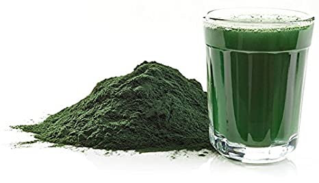 Amazon.com: Algas de la Vida- Espirulina Shelo Nabel: Health ...