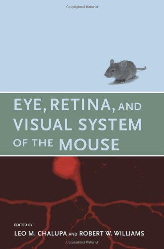 Eye, Retina, and Visual System of the Mouse (The MIT Press)