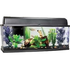 Petco bookshelf freshwater fish aquarium for Petco fish tank decor