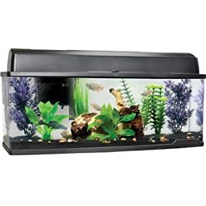 Petco bookshelf freshwater fish aquarium for Petco small fish tank