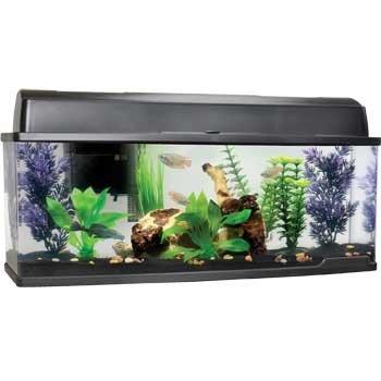 Petco Bookshelf Freshwater Fish Aquarium