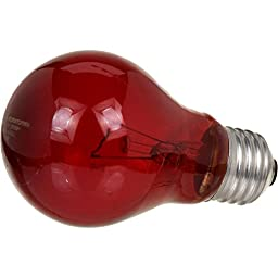 Zoo Med Nightlight Red Reptile Bulb 40 Watts
