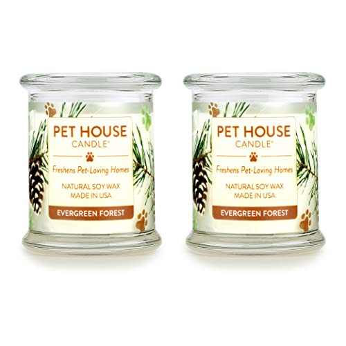 One Fur All 100% Natural Soy Wax Candle, 20 Fragrances - Pet Odor Eliminator, Appx 60 Hrs Burn Time, Non-Toxic, Eco-Friendly Reusable Glass Jar Scented Candles – Evergreen Forest - Pack of 2
