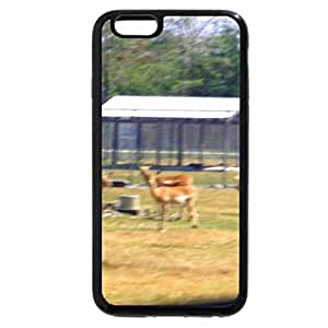 iPhone 6S Plus Case, iPhone 6 Plus Case, safari tour