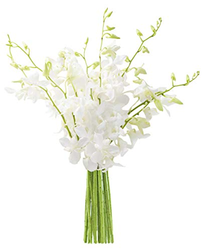 KaBloom Exotic Perla White Orchid Bouquet of White Orchids from Thailand