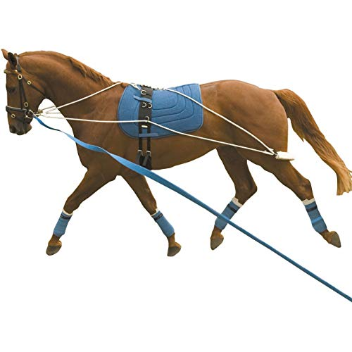 Kincade Lunging Training System based on PESSOA Training Aid 1 Size by Kincade