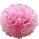 Weiliru Tissue Paper Pompoms Decorations - 10PCS Flower Ball Variety Perfect Decor for Graduation Birthday Weddings Bridal