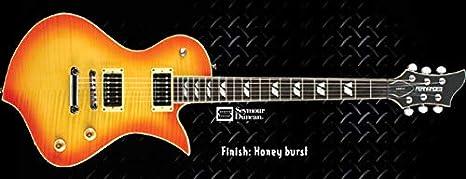 GUITARRA FERNANDES RAVELLE DLX HB: Amazon.es: Instrumentos musicales