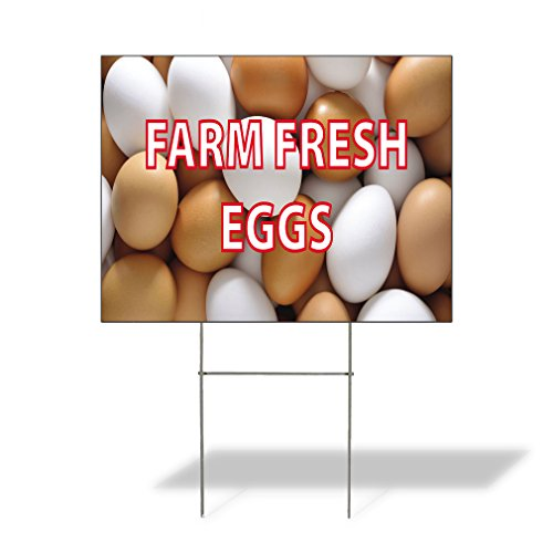 Plastic Weatherproof Yard Sign Dairy Farm Fresh Eggs #1 Style D for Sale Sign One Side 18inx12in