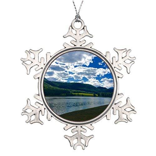 OneMtoss Christmas Snowflake Ornament Personalised Christmas Tree Decoration Denali National Park Christmas Snowflake Ornament Movie