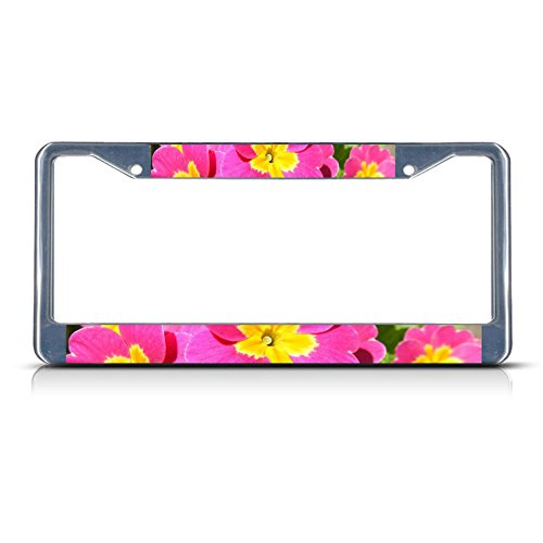 Primrose Flower Metal - Border with 2 Holes - License Plate Frame Tag for Home/Man Cave Decor by (Primrose Border)