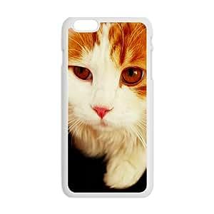 Cat Phone Case for iPhone 6 Plus Case