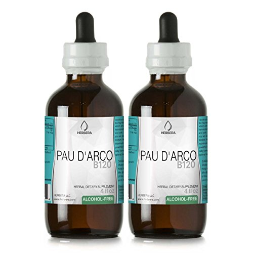 PAU d Arco B120 2pcs Alcohol-Free Herbal Extract Tincture, Super-Concentrated Wildcrafted PAU d Arco Tabebuia Impetiginosa Dried Bark 2×4 fl oz