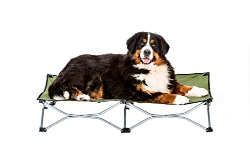 Carlson Elevated Dog Bed, Indoor or Outdoor Dog Bed for Large Dogs, Green