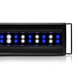 Current Orbit Marine IC Reef Aquarium Accessory LED Light Fixture