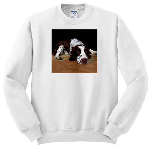 Dogs English Springer Spaniel - English Springer Spaniel - Sweatshirts - Youth SweatShirt Large(14-16)