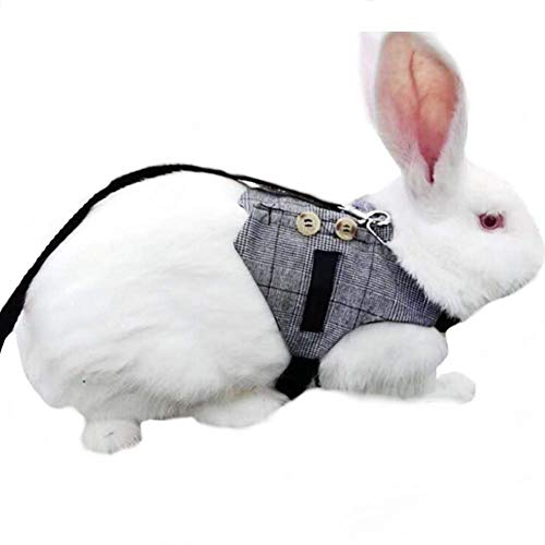 Multipurpose Rabbit Vest Harness and Leash Set Small Animal Adjustable Soft Harness with Button Decor Formal Suit Style for Bunny Rabbit Kitten Small Animal Walking -