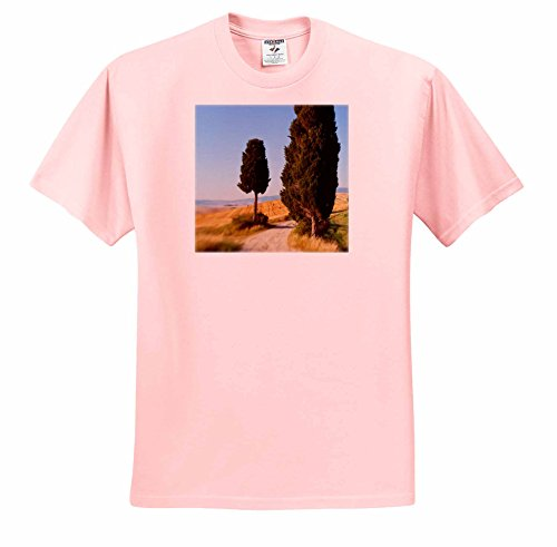 danita-delimont-italy-winding-road-val-d-orica-tuscany-italy-t-shirts-adult-light-pink-t-shirt-2xl-t