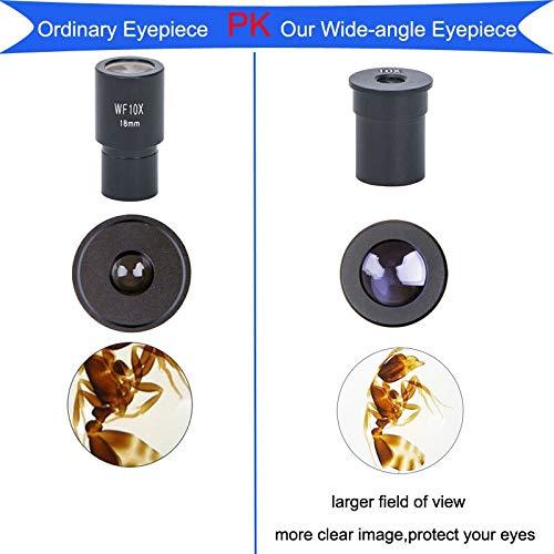 Mercury/_Group Color:1PC WF25X Dedicated Wide Angle Eyepiece Microscope 5X 10X 15X 20X 25X Biological Microscope Lens 23.2mm Mounting Size Microscope Ocular