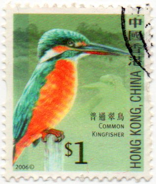 Hong Kong Postage Stamp Single 2006 Common Kingfisher Issue $1. Scott #1232