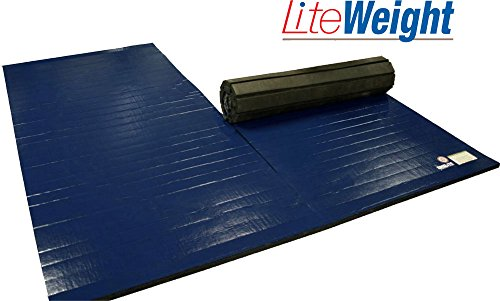 Wrestling Mat Liteweight 6 X10 Two 6 X5 Pieces