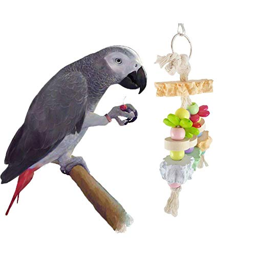 Hypeety Bird Chew Toy Calcium Teeth Grinding Stone Chew Treats Wood String Toy for Hamster Bird Parrot African Grey…