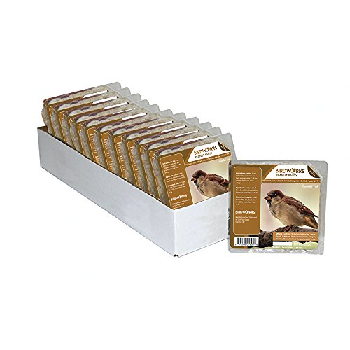 Birdworks 88801 Peanut Party Suet Cakes For Songbirds, Case of 12