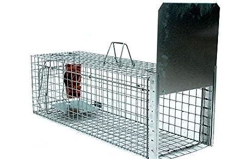 Zielonalapka Strong Super Fuerte Trampa tamaño 102 x 34 x 42 cm Trampa para martas Gato Zorro Animales Alambre Perros tejones nutrias con Extra Cebo: ...