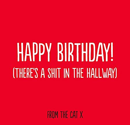 Inappropriate birthday card from the cat funny birthday card inappropriate birthday card from the cat funny birthday card humorous greeting card rude bookmarktalkfo Gallery