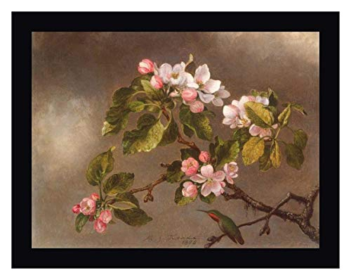 Hummingbird and Apple Blossoms by Martin Johnson Heade - 21